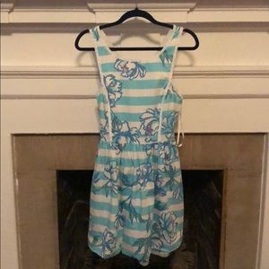 Lilly Pulitzer Blue and White Stripe Floral Dress